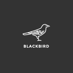 Black Bird Clothing